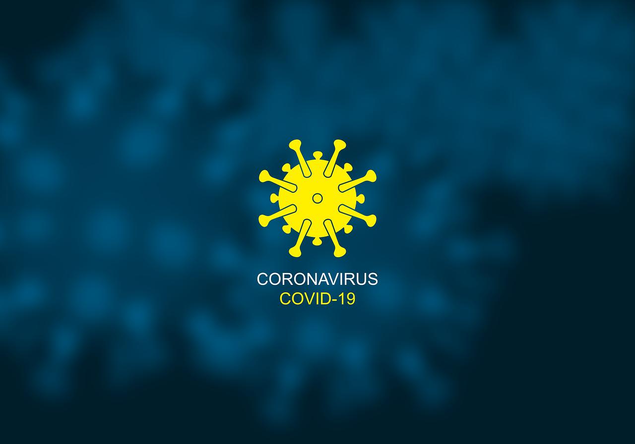 Image de l'article : Coronavirus : comment faire une carte grise malgré le Covid-19 ?